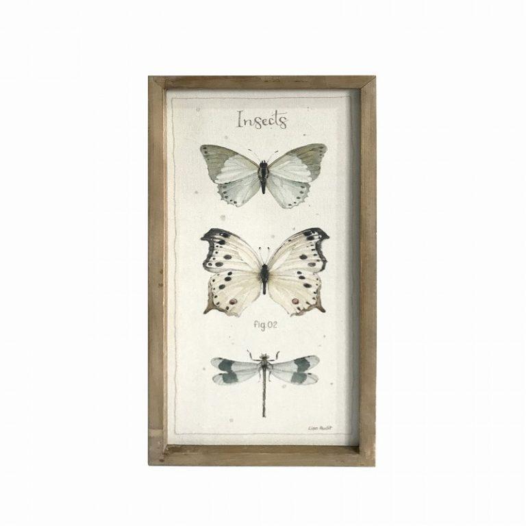 תמונה הדפס Insects מסגור עץ