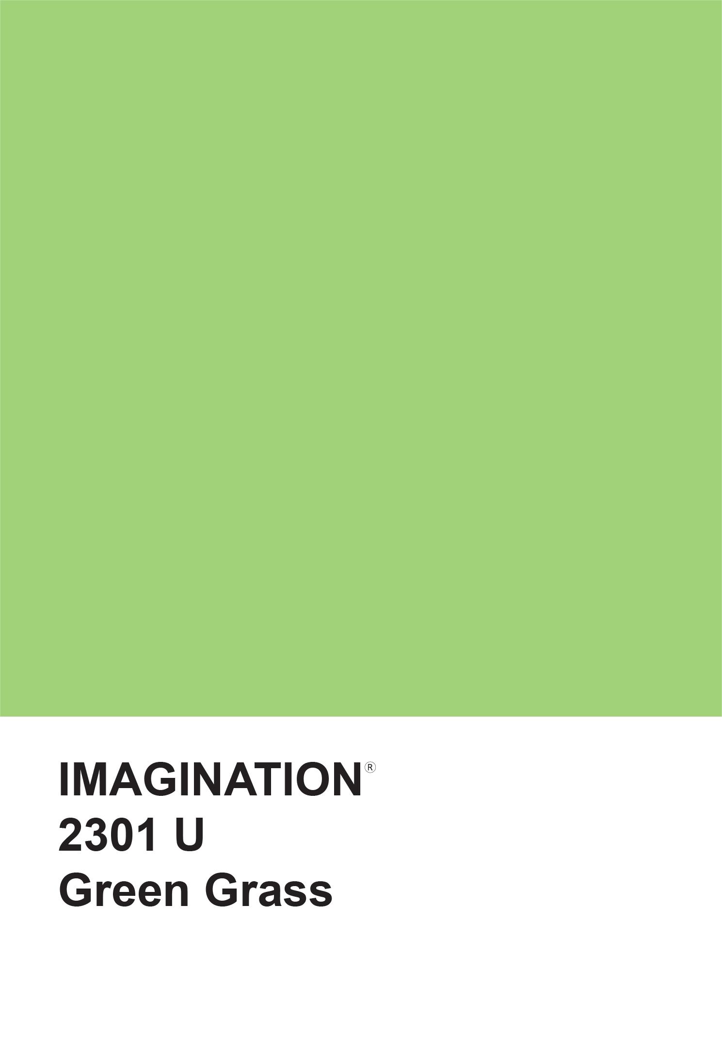 """פנקס ממו 12X17.5 ס""""מ - ירוק Green Grass"""