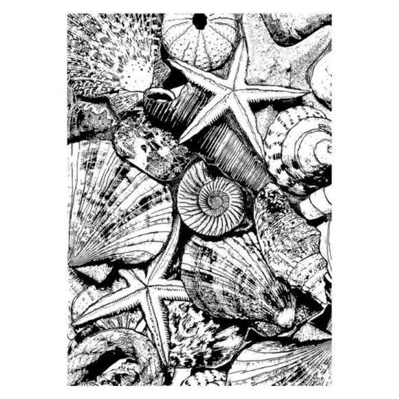 חותמת סיליקון - From the sea