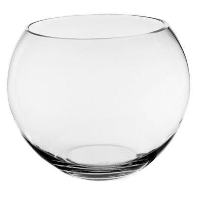 טרריום זכוכית גדול