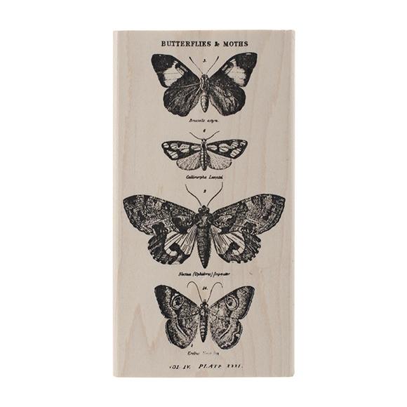 חותמת עץ - Butterflies and Moths