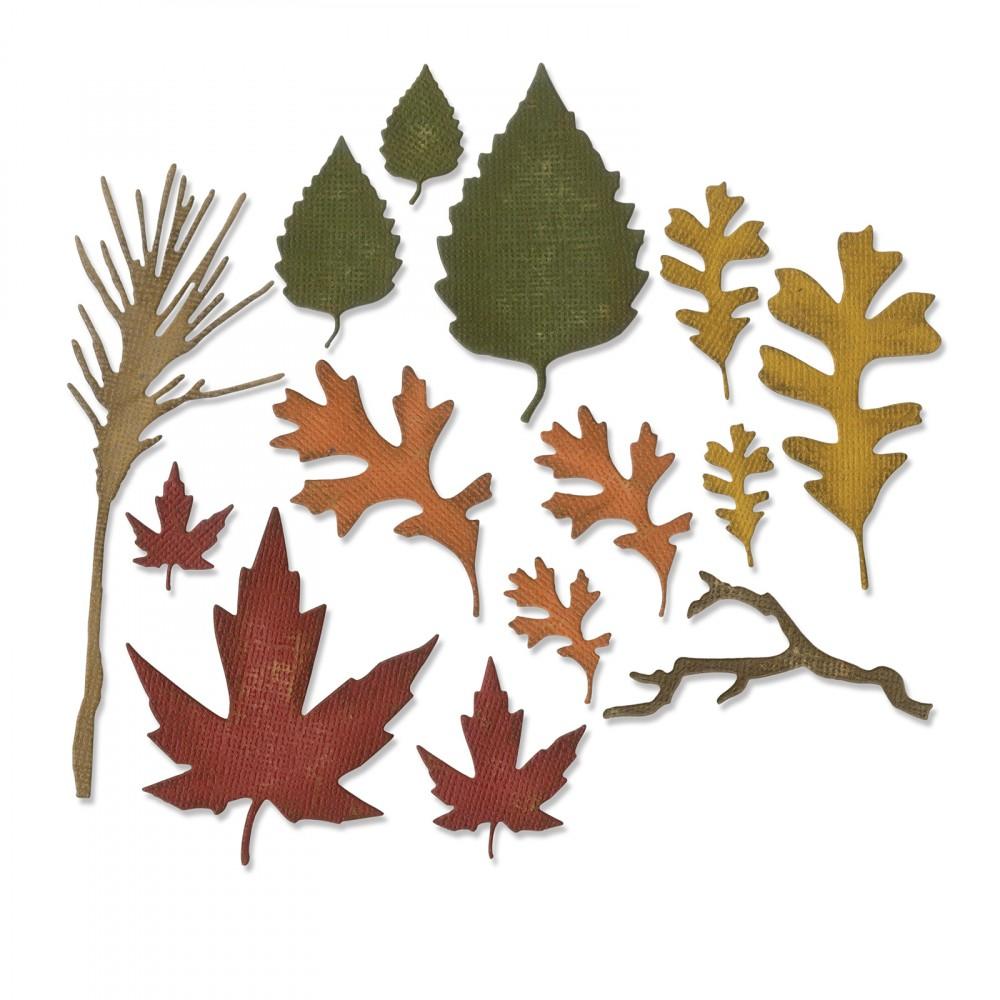 סט תבניות חיתוך - Thinlits Dies - Fall Foliage