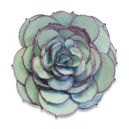 תבנית חיתוך- Bigz Die - Succulent