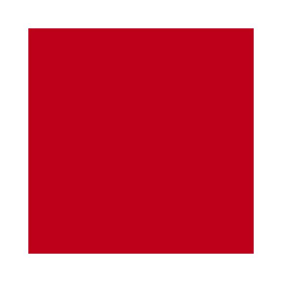 דף קארדסטוק - Classic - Scarlet