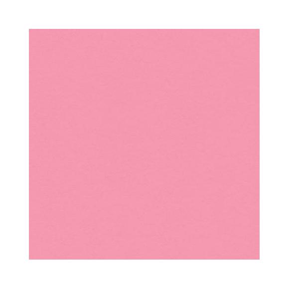 דף קארדסטוק - Petal Pink