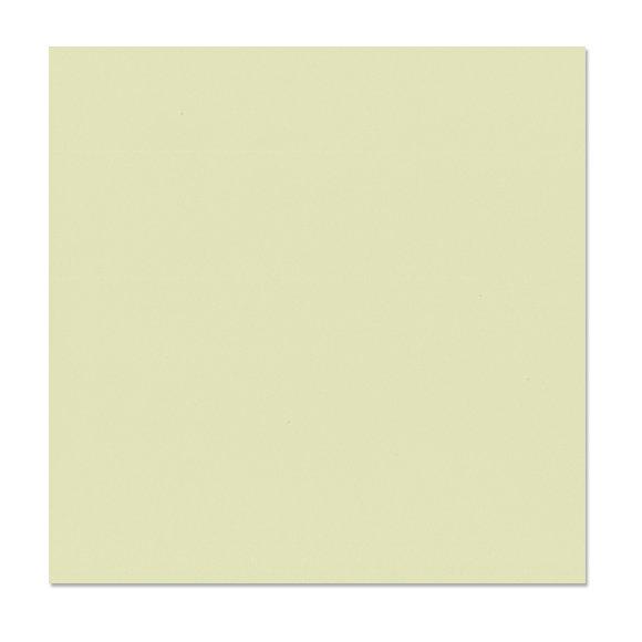 דף קארדסטוק Canvas Texture - Aloe Vera