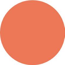 כרית דיו - Dye Ink Pad - BURNT ORANGE