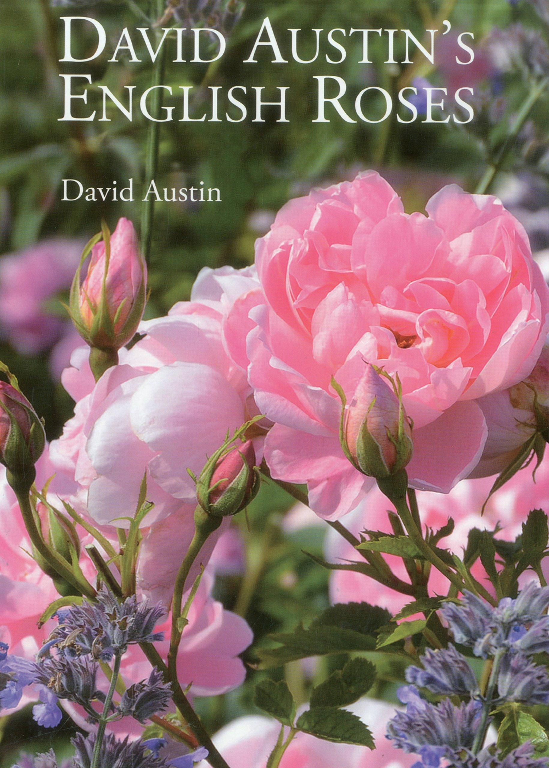 English Roses - ספר הדרכה לגידול ורדים אנגליים