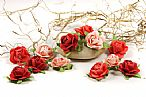 Fairytale roses coral