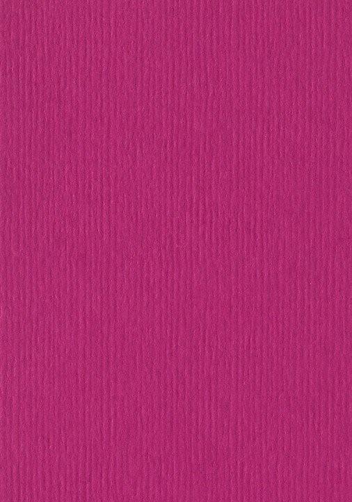 מארז דפי A4- סגול יין
