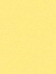 מארז דפי A4- צהוב בננה