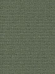 מארז דפי A4- ירוק יער