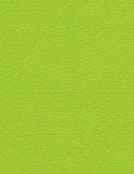 מארז דפי A4- ירוק דשא