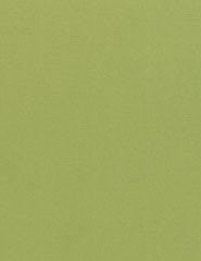 מארז דפי A4- אבוקדו