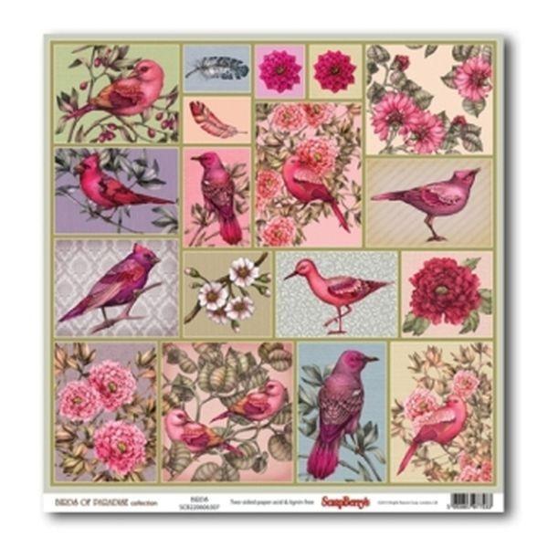 דף קארדסטוק - Birds of Paradise - Birds