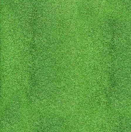 דף קארדסטוק מנצנץ - Glitter Paper - Leaf